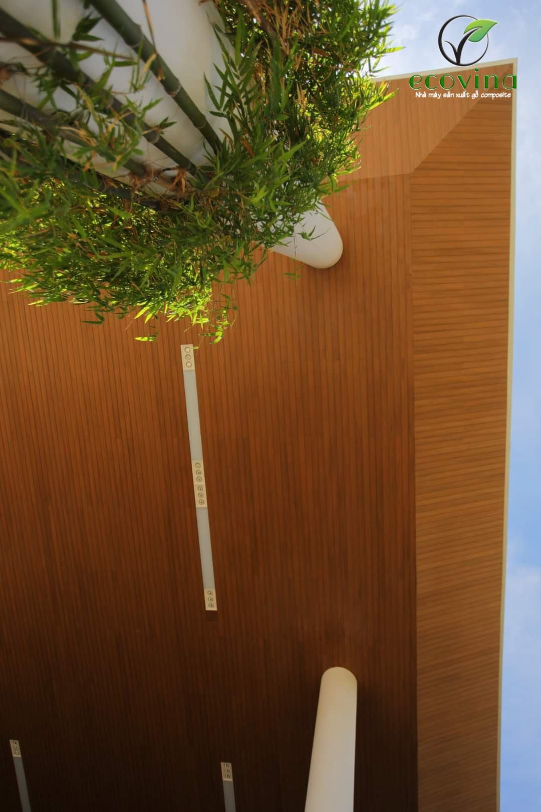 Tấm nhựa giả gỗ ốp trần